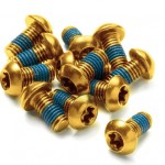 Gold Rotor Bolts Steel - Obtainium